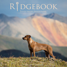 RIDGEBOOK - VOL 2 - EXPEDITED  5 WEEK TURNAROUND (+$15)