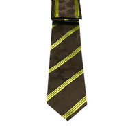 Antonio Ricci Necktie w/ Matching Pocket Square - Brown Paisleys with Gold Stripes