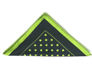 Antonio Ricci Light Green Polka Dot on Black Pocket Square