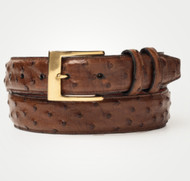 Brown (Gold Buckle