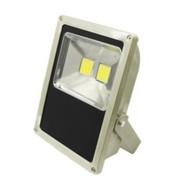 LEDware LED Floodlight 100W (8500 lm) Cool White Flex & Plug