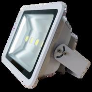 LED Floodlight 200W (17,800 lm) Cool White Flex & Plug