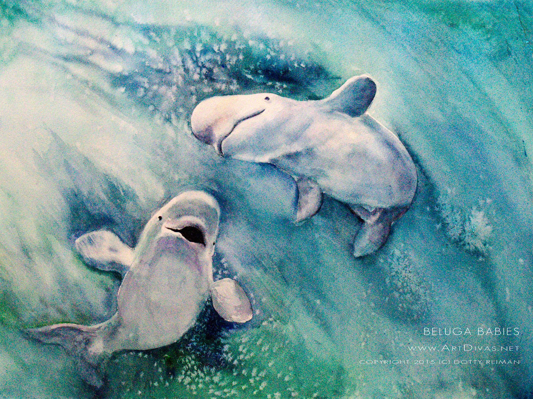 "Dotty's ""Baby Belugas"" which went home that day."