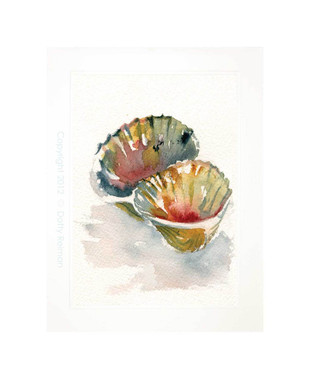 Double Scallop Original Watercolor Painting by Dotty Reiman