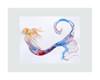 8 x 10 inch matted Tranquilit Mermaid Fine Art Print by Tamara Kapan