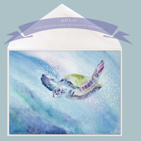 Solo Sea Turtle Greeting Card by Dotty Reiman