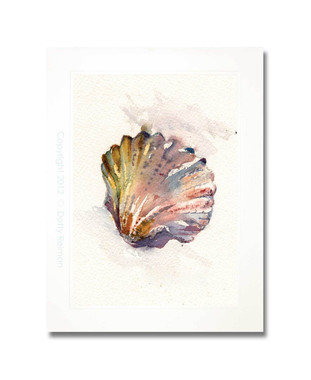 Original Rainbow Scallop Shell Watercolor Painting by Dotty Reiman