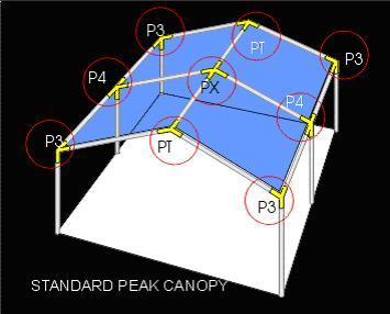 canopy1.jpeg