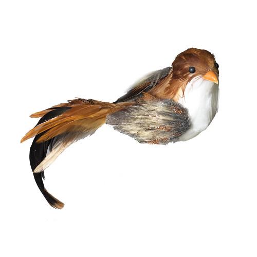 Feather Bird Brown