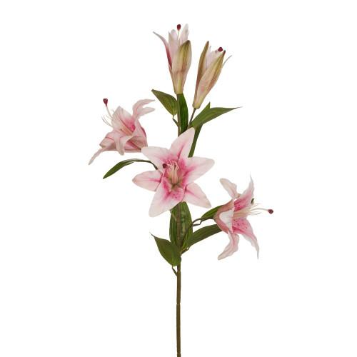 Pink Casablanca Lily