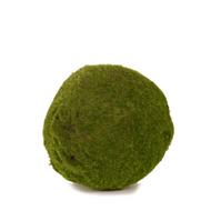 Green Moss Ball - 21cm