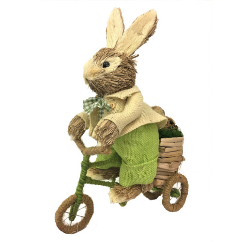 Male Bristle Straw Green Bunny on Bike