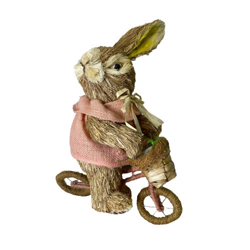 Bristlestraw Rabbit Easter Bunny On Bike Pink Female