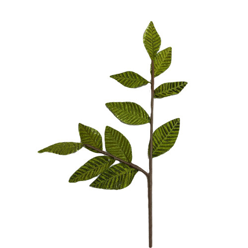 Leaf Spray Olive