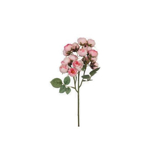Light Pink Rose Cabbage Spray