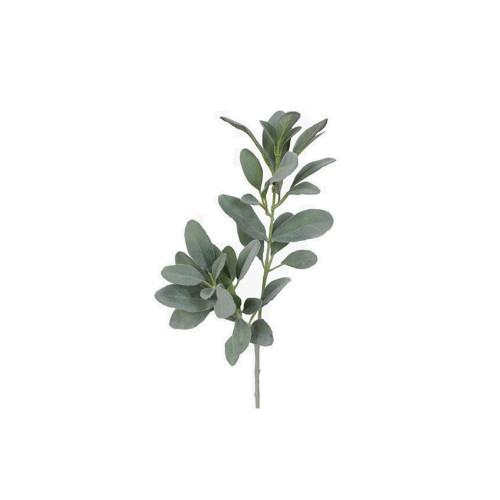 Grey Lambs Ear Leaf Spray
