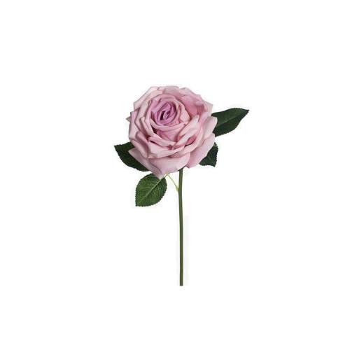 Lavender Rose Bella
