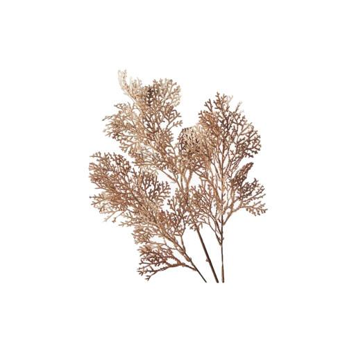 Brown Fern Coral Spray