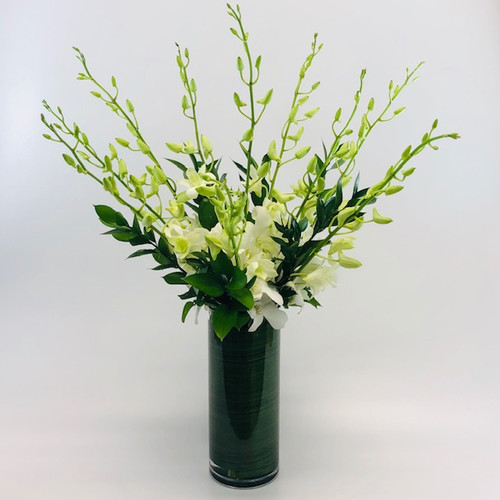 Elegant Dendrobium Orchids in a clear cylinder with a leaf wrap in Washington DC and Rockville MD, Palace Florists