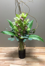 Cymbidium Orchid in cylinder with river rocks and curly willow in Rockville MD, Palace Florists