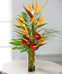 Simply Tropical showcases birds and anthurium in a tall cylinder with beautiful foliage in Rockville MD, Palace Florists