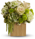 Bamboo Mist showcases succulents, roses and other green flowers in a bamboo container in Potomac MD, Palace Florists