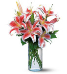 Lovely Lilies showcases a beautiful display of lilies in Potomac MD, Palace Florists