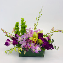 Orchid Rainforest showcases dendrobium and cymbidium orchids in a rectangle glass vase in Rockville MD, Palace Florists