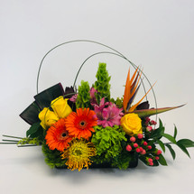 St. Tropez showcases yellow roses, orange gerbers, birds of paradise, bells of Ireland a gorgeous foliage designed in a low black container in Rockville MD, Palace Florists