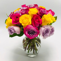 DC Rainbow - 25 Short Stemmed Mixed Colored Roses - LOCAL DELIVERY ONLY