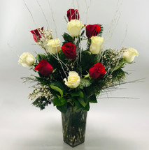 Peppermint Twist, Red and White Long Stem Roses with holiday greens, silver branches and accent flowers in Rockville MD, Palace Florists