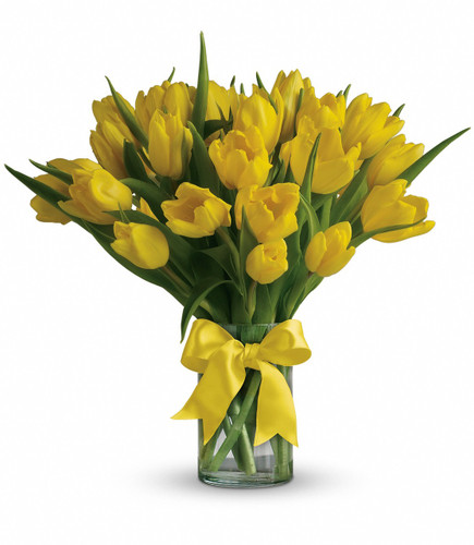 Sunny Yellow Tulips showcasing twenty yellow tulips in a cler vaase with yellow bow in Washington DC and Rockville MD, Palace Florists