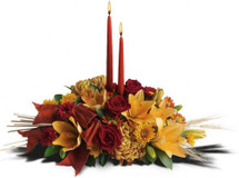 Graceful Glow in Bethesda MD, Palace Florists