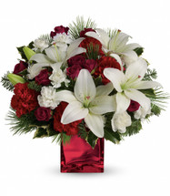 Caroling in the Snow showcases red spray roses, white asiatic lilies and red carnations accented by tips of white pine, noble fir and holly in a red cube in Bethesda MD, Palace Florists