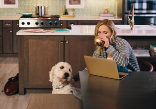 Female with dog sitting at dining table using laptop in a contemporary KraftMaid kitchen