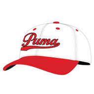 Puma Youth Script Fitted Hat (OSFA) NEW