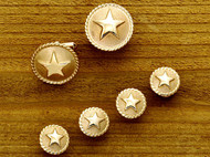 Gold Frosted Rope Star Set