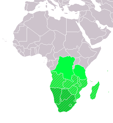Electricity in Southern Africa