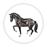 PE - PASO FINO HORSE