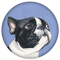PE- FRENCH BULLDOG