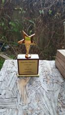 Star Award Trophy on Piano Finish Base