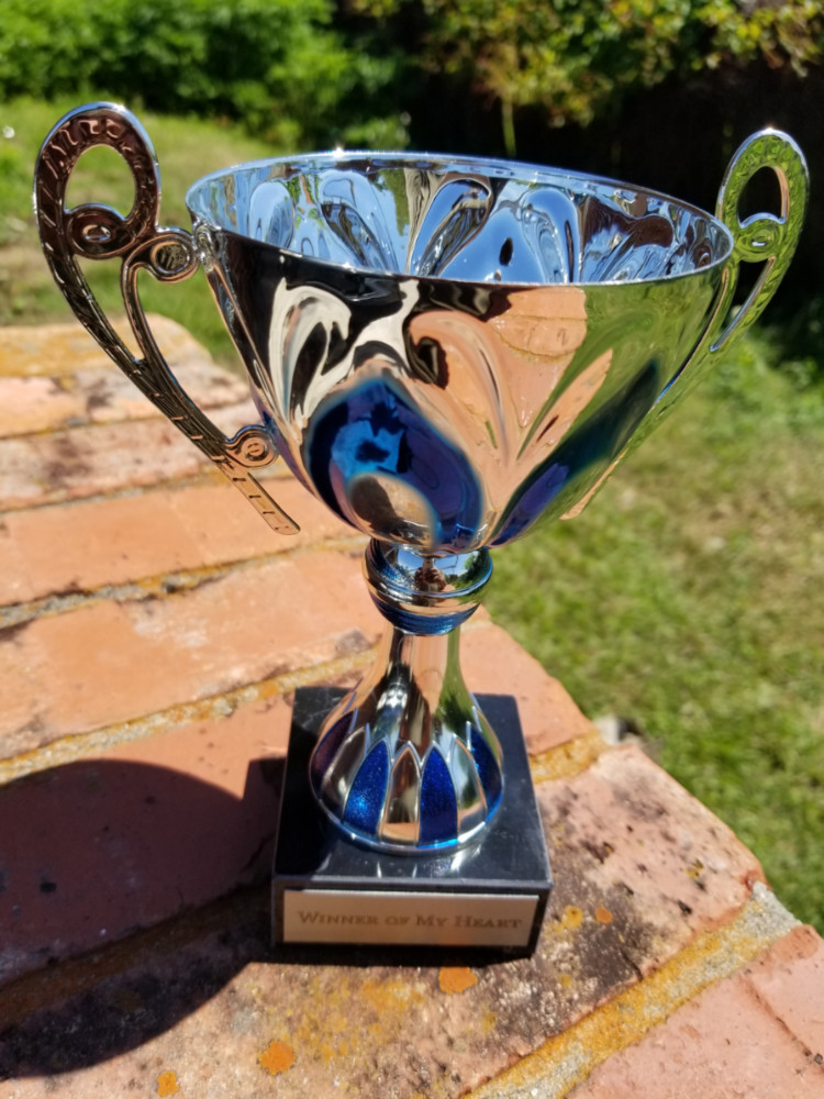 Silver & Blue Metal Cup Trophy on Marble Base