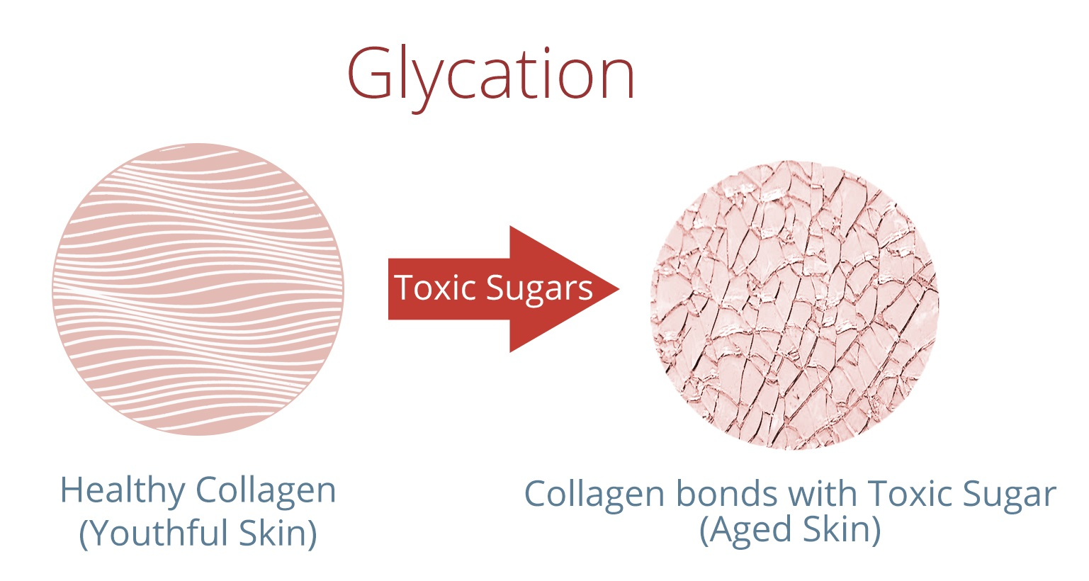 toxic-sugar-diagram-2.jpg