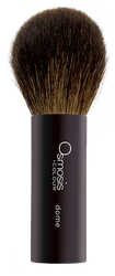 Osmosis +Colour Dome Powder Brush