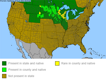 oval-leaf-milkweed-range-map-450x345.jpg