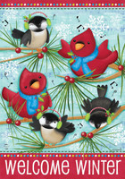 Winter Songbirds