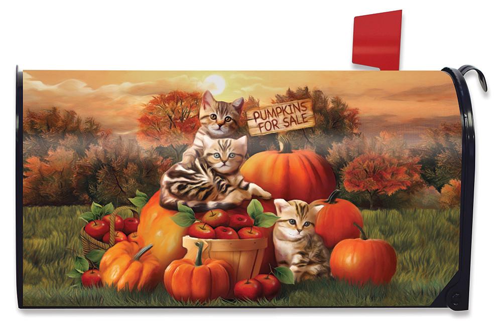 Briarwood Lane Farm Fresh Mums Autumn Magnetic Mailbox Cover Fall Standard