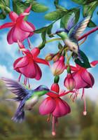 Flight Of The Hummingbirds Garden Flag
