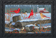 Birds of Winter Doormat