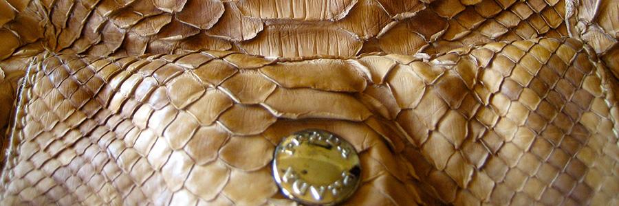 snakeskin-bag.jpg